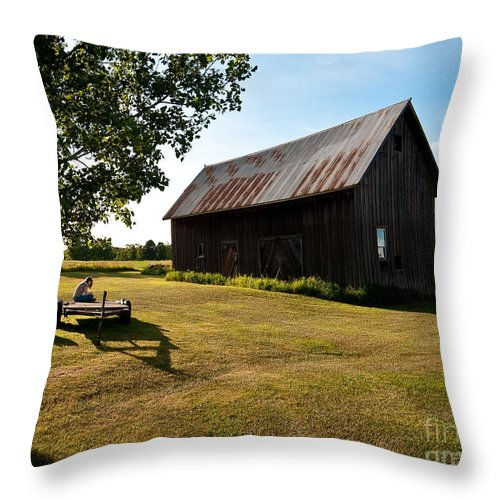 Barn Throw Pillow featuring the photograph Jesse's World by Steven Dunn