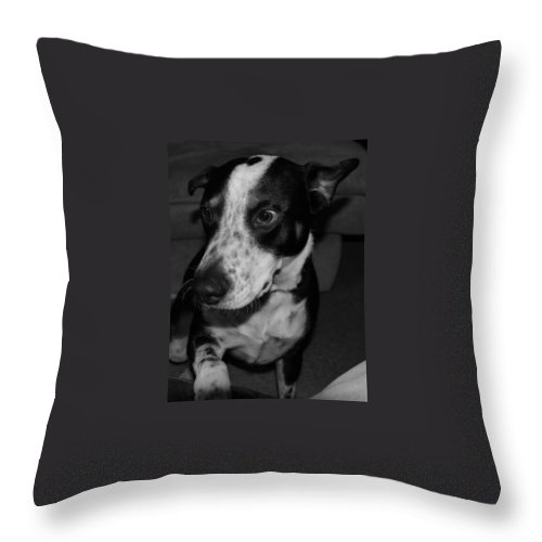 Black And White Throw Pillow featuring the photograph Jimmy by Rob Hans