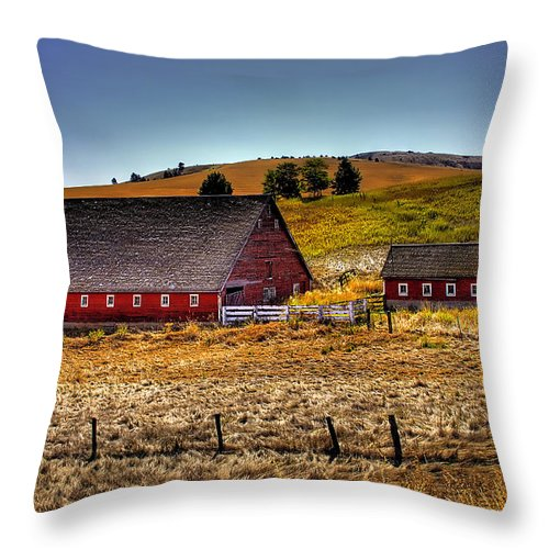 Landscape Throw Pillow featuring the photograph Johnson Road Barns by David Patterson
