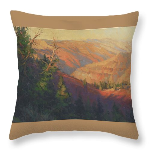 Canyon Throw Pillow featuring the painting Joseph Canyon by Steve Henderson