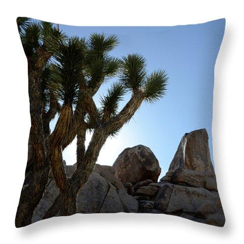 Joshua Tree National Park Throw Pillow featuring the photograph Joshua Tree California by Bob Christopher