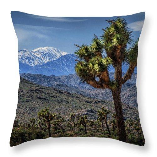 California Throw Pillow featuring the photograph Joshua Tree In Joshua Park National Park With The Little San Bernardino Mountains In The Background by Randall Nyhof
