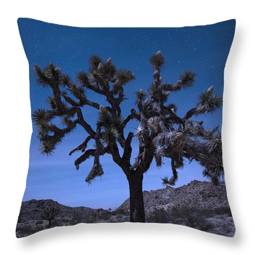 America Throw Pillow featuring the photograph Joshua Tree by Juli Scalzi