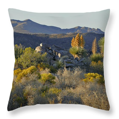 Sunset Throw Pillow featuring the photograph Joshua Tree National Park In California by Christine Till