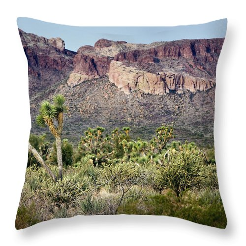 Joshua Trees Throw Pillow featuring the photograph Joshua Trees by Phyllis Denton