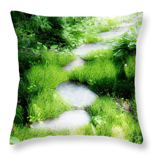 Journey Throw Pillow featuring the photograph Journey by Idaho Scenic Images Linda Lantzy