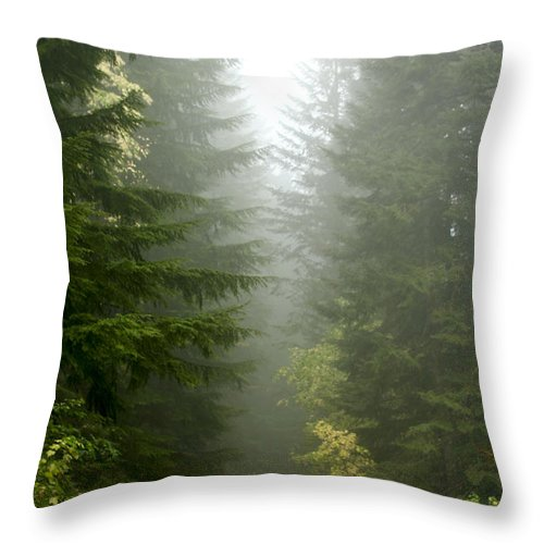 Forest Throw Pillow featuring the photograph Journey Through The Fog by Idaho Scenic Images Linda Lantzy