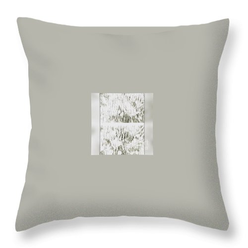 Abstract Throw Pillow featuring the photograph Joy Today by Alwyn Glasgow