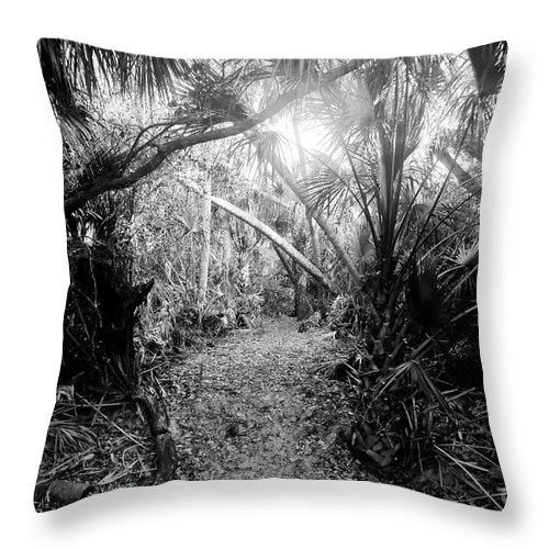 Jungle Throw Pillow featuring the photograph Jungle Trail by David Lee Thompson