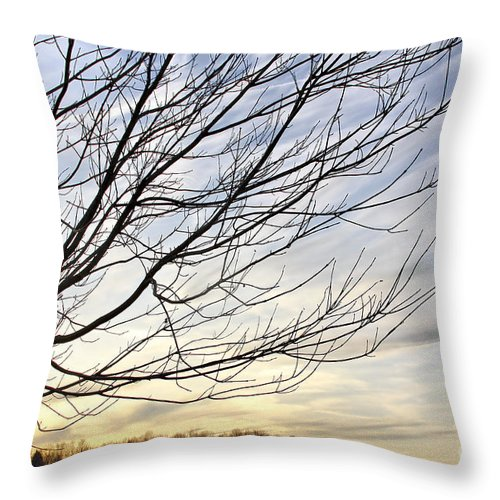 Sky Throw Pillow featuring the photograph Just A Tree And Clouds by Deborah Benoit