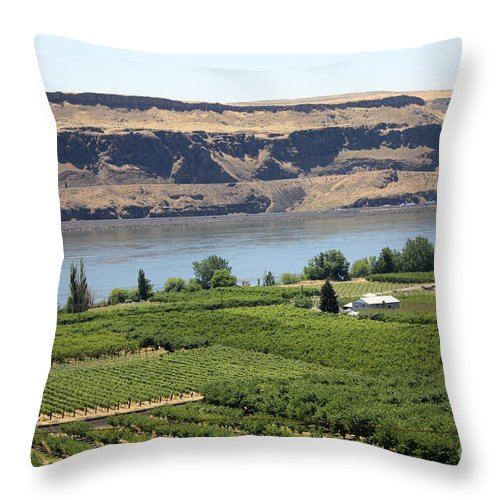 Columbia River Gorge Throw Pillow featuring the photograph Just Add Water... by Carol Groenen