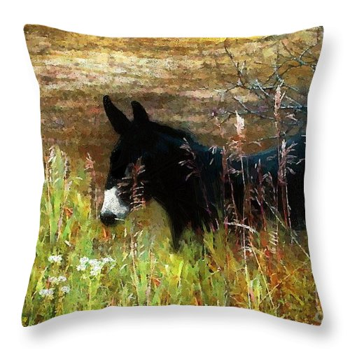 Burro Throw Pillow featuring the painting Just Chillin' by RC DeWinter