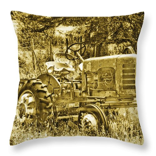 Vintage Throw Pillow featuring the photograph Just for Lookin' at... Now by Linda McRae