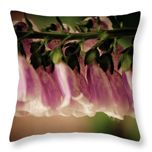 Throw Pillow featuring the photograph Just Hangin Around by Trish Tritz