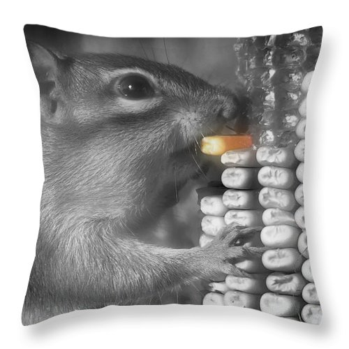 Chipmunk Throw Pillow featuring the photograph Just One More Bite by Kenneth Krolikowski