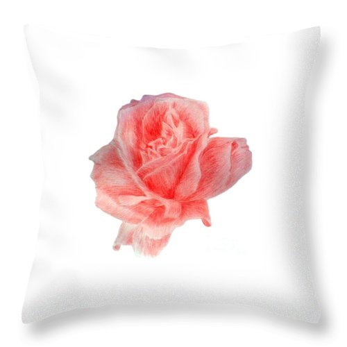 Drawing Flower Rose Colored Pensils Paper Throw Pillow featuring the drawing Just Rose by Nadi Sabirova