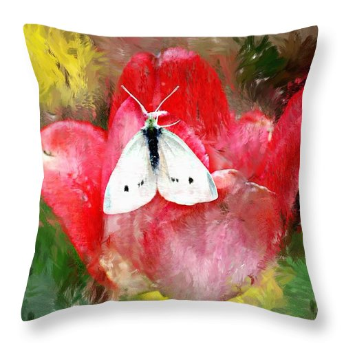 Digital Photo Throw Pillow featuring the photograph Just Visiting by David Lane
