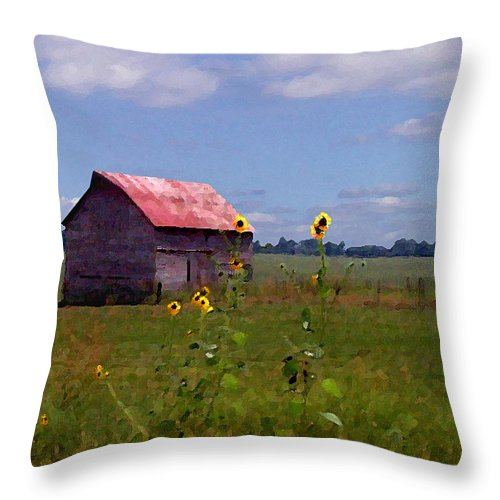 Landscape Throw Pillow featuring the photograph Kansas Landscape by Steve Karol