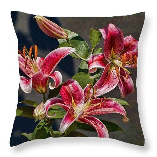Lilies Throw Pillow featuring the photograph Karen's Lilies by Edward Sobuta