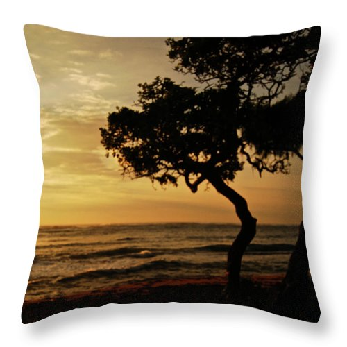 Kauai Throw Pillow featuring the photograph Kauai In The Morning 0910 by Michael Peychich