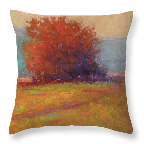 Landscapes Throw Pillow featuring the painting Keene Valley Field by Susan Williamson
