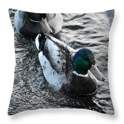 Ducks Throw Pillow featuring the photograph Keep Swimming by Julie Street
