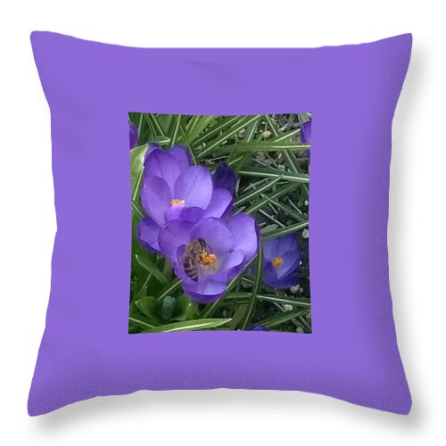 Nature Throw Pillow featuring the photograph Keep The Bee Safe by Jacob O'Neill