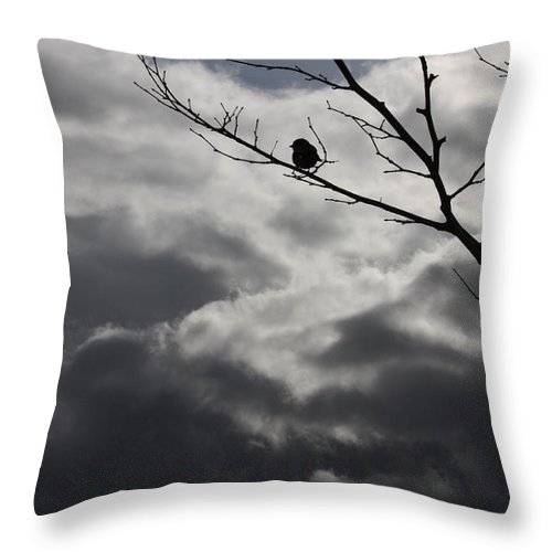 Storm Throw Pillow featuring the photograph Keeping Above The Storm by Carol Groenen