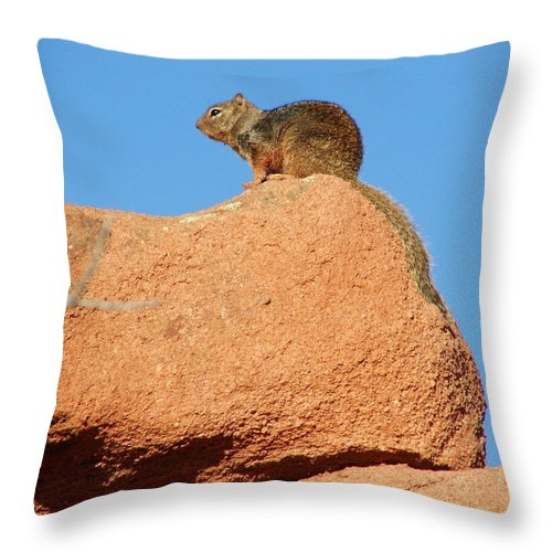 Colorado Throw Pillow featuring the photograph Keeping Watch by Bob W Brown