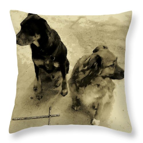Dog Throw Pillow featuring the photograph Keeping Watch In Sepia Tone by Deborah Montana