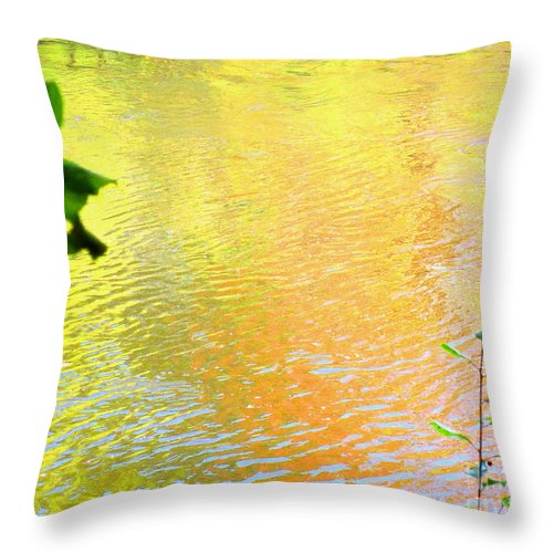 Water Art Throw Pillow featuring the photograph Kindness by Sybil Staples