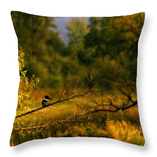 Landscape Throw Pillow featuring the photograph King Fisher by Steve Karol