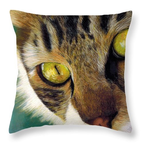 Animal Throw Pillow featuring the drawing King Of The Cats by Kat Skinner