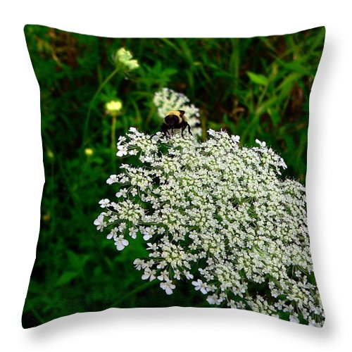 Bumblebee Throw Pillow featuring the photograph King Of The Flower by RiaL Treasures