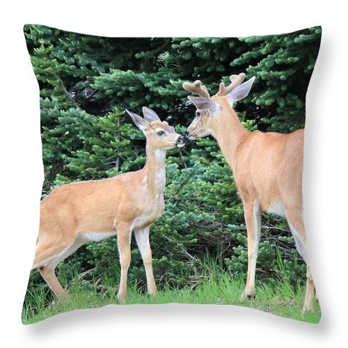 Nature Throw Pillow featuring the photograph Kiss by Lisa Spero