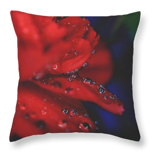 Flowers Throw Pillow featuring the photograph Kisses In The Rain by Laurie Search