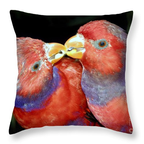 Kissing Throw Pillow featuring the photograph Kissing Birds by David Lee Thompson
