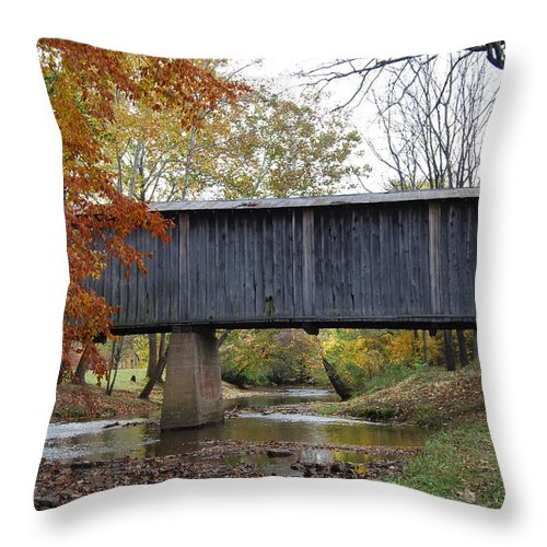 Landscape Throw Pillow featuring the photograph Kissing Bridge At Fall by Eric Liller