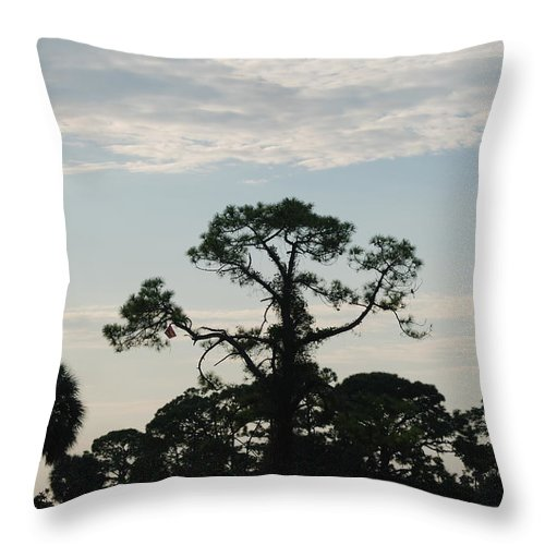 Kite Throw Pillow featuring the photograph Kite In The Tree by Rob Hans