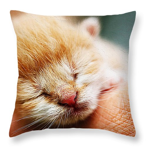 Adorable Throw Pillow featuring the painting Kitten In Hand by Queso Espinosa