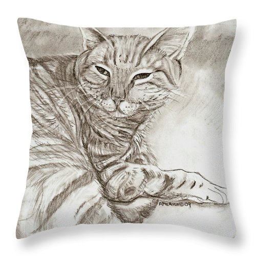 Cat Throw Pillow featuring the drawing Kitty Cat by Americo Salazar
