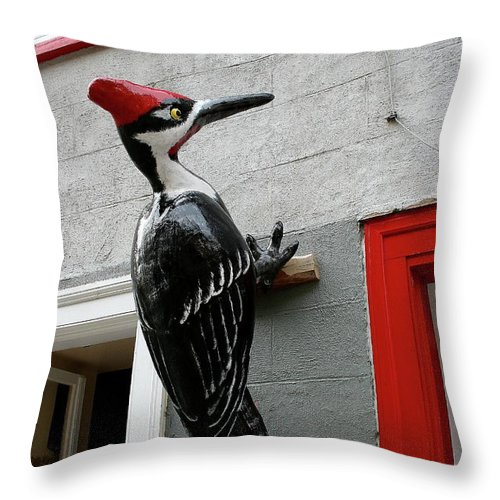 Woodpecker Throw Pillow featuring the photograph Knock On The Wall by Christiane Schulze Art And Photography