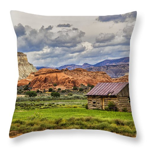 House Throw Pillow featuring the photograph Kodachrome Cabin by Roberta Bragan