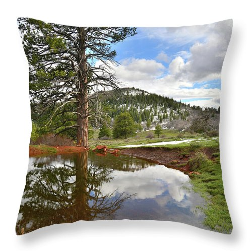 Zion National Park Throw Pillow featuring the photograph Kolob Reflection by Ray Mathis
