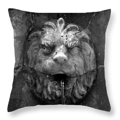 Lion Throw Pillow featuring the photograph Koreshans Lion by David Lee Thompson