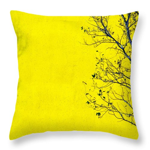 Skip Throw Pillow featuring the photograph Krishna by Skip Hunt