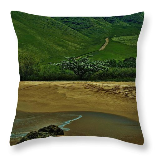 Kula'ila'i Beach Throw Pillow featuring the photograph Kula'ili'i Beach by Craig Wood