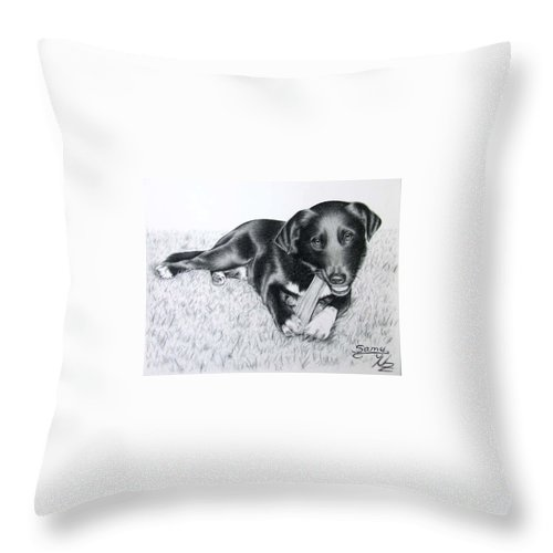Dog Throw Pillow featuring the drawing Labrador Samy by Nicole Zeug