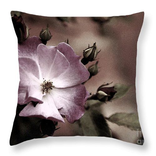 Rose Throw Pillow featuring the photograph Ladies In Waiting by Linda Shafer