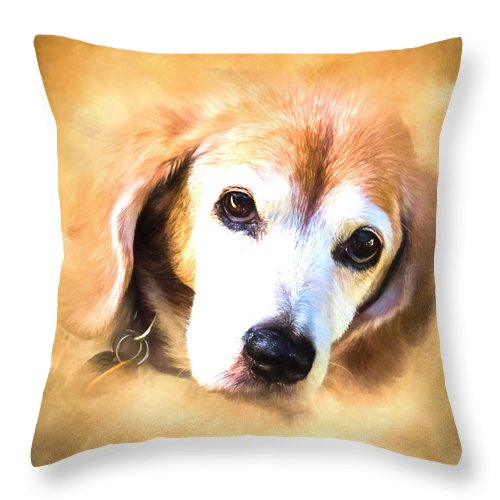 Dog Throw Pillow featuring the photograph Lady Bug by Cheryl Frischkorn